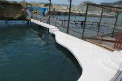 дорожки дельфинария в море